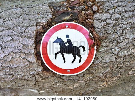 No trespassing, horse riding sign. Tree trunk with road sign.