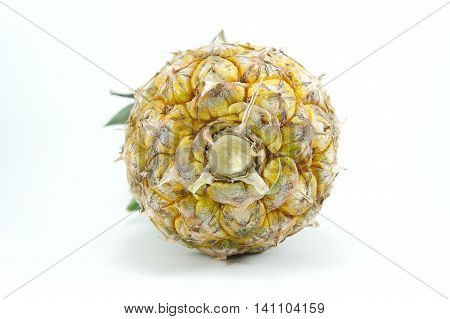 Pineapple fruit with high fiber. Helps to excrete