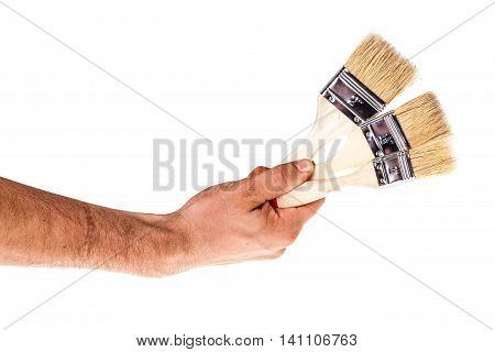 Hand Holding Paintbrushes On White