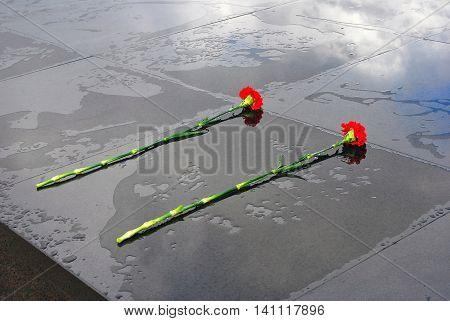 Two red carnations put on black background. Peace symbol. War memorial. Kremlin in Nizhny Novgorod, Russia. Popular landmark.