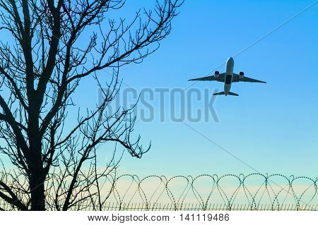Silhouette of a tree a fence of barbed wire and a plane taking off on the background