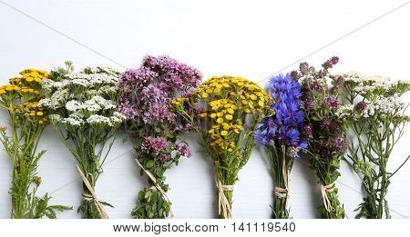 Different types of fresh herbs on a white background.
