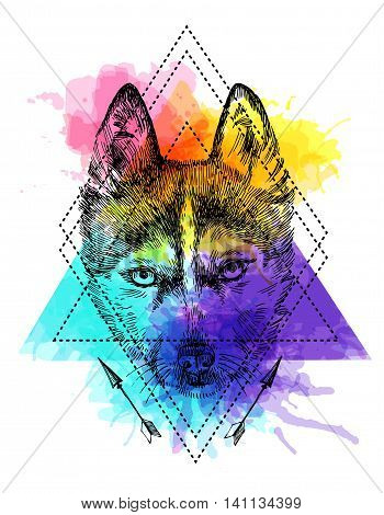 Beautiful hand drawn vector illustration sketching of husky. Boho style drawing. Use for postcards, print for t-shirts, posters, tattoo.