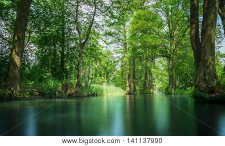 Floating line in the recreation area Spree forest near Berlin