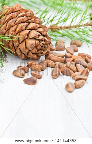 Cedar nuts and cedar cones on white background
