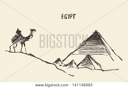 Sketch of the Pyramids and camel Giza in Cairo, Egypt. Vector illustration