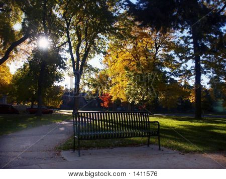 Park Bench Ina  Autumn Park