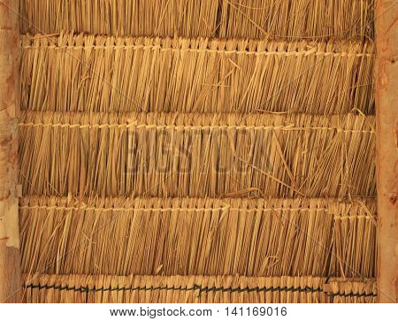 close up of Tropical thatched roof background