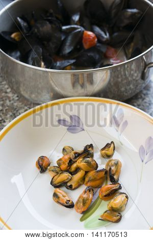Neapolitan peppered mussels cooked with mussels tomatoes and seasoned with pepper