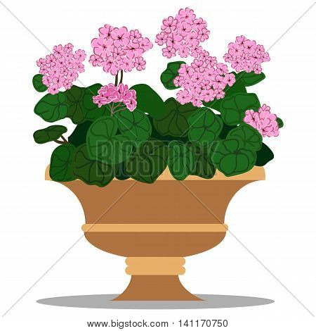 Vector colorful illustration of floral arrangement in pot.
