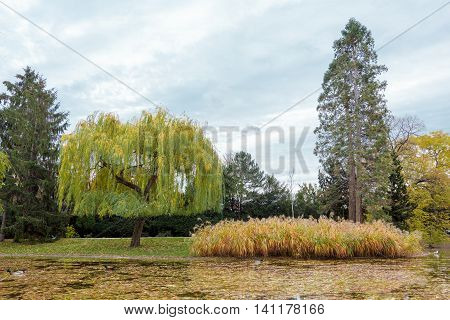 Stadpark view in Autumn season. Vienna Austria