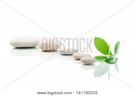 Zen Stones And Green Leaf