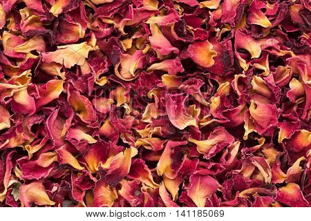 Organic dry Rose Damask petals (Rosa damascena). Macro close up background texture. Top view.