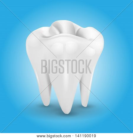 Tooth isolated on a blue background . vector illustration