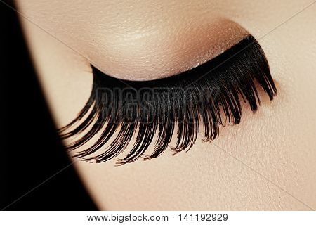 Beauty Face Makeup. Make Up. Eyelashes Extensions. Perfect Make-