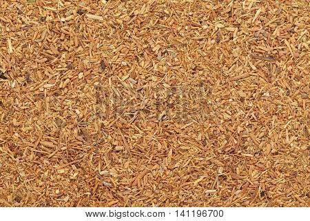 Organic grated Himalayan cedar or Devadar (Cedrus deodara) in tea cut size. Macro close up background texture. Top view.