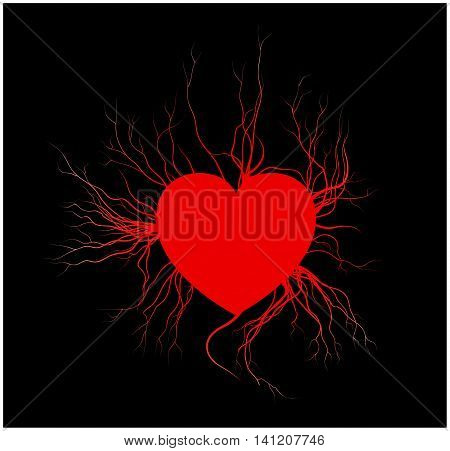 human veins with heart red love blood vessels valentine design. Vector illustration isolated on black background