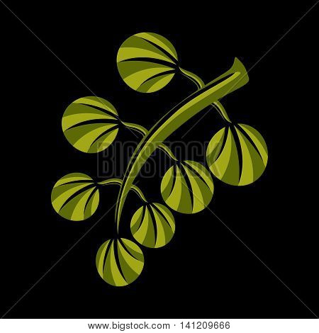 Simple green vector leaf of deciduous tree stylized nature element.