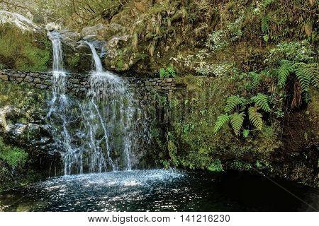 Waterfall on the  Ribeiro Frio to Portela walk that follows the Serra do Faial Levada, Madeira.