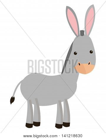 flat design donkey cartoon icon vector illustration