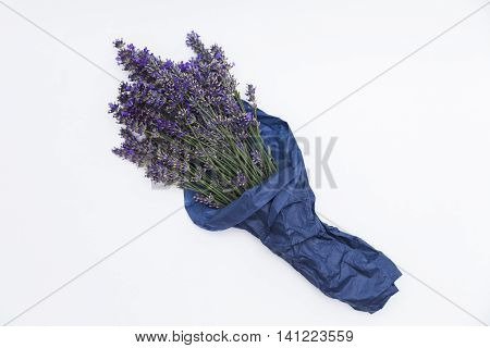 Bouquet of purple fresh fragrant lavender wrapped in blue paper on white background
