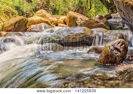 River current flowing through the rocks and trees