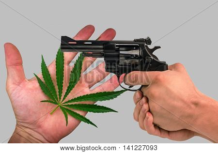 marijuana leaf on the palm and a gun in his hand. isolated