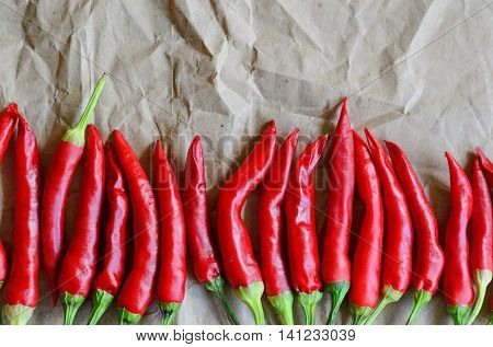 Hot red chili pepper on vintage paper background copy space