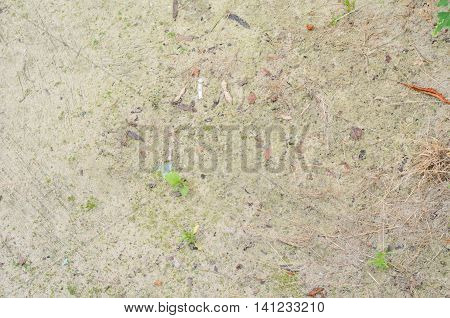 Background of wet sand after rain texture