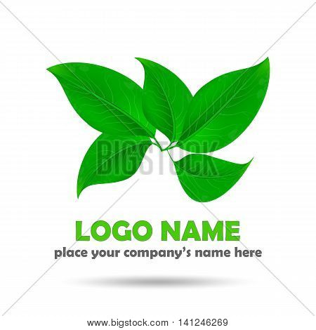 Beautiful realistic green leaves on white. Eco concept logo. Vector illustration.