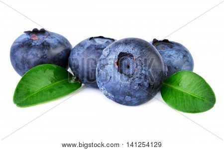 Fresh Blueberries with leaves on white closeup