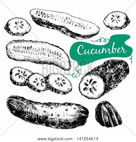 Colltction of hand drawn graphic illustration with cucumbers in sketch style