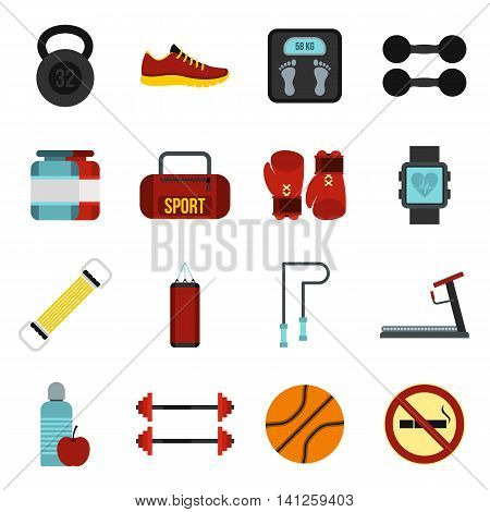 Flat gym icons set. Universal gym icons to use for web and mobile UI, set of basic gym elements isolated vector illustration