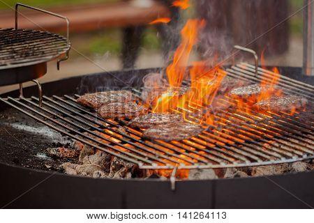 Summer. Park. Hamburger patties on the grill under flaming coals