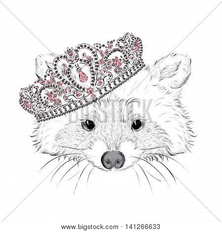 Hipster. Raccoon in the crown. Vector illustration for greeting card, poster, print, or on clothing.
