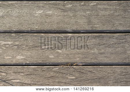wooden slats horizontally on the beach worn by the sun background