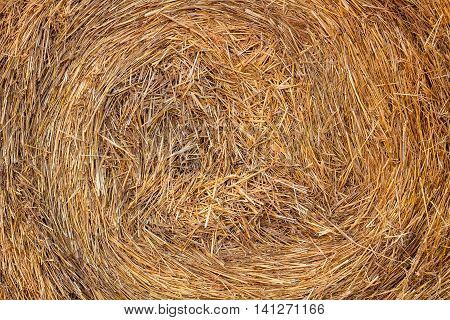 Dry hay stack sprial for natural background
