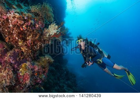 Scuba divers exploring the coral reef in a tropical sea