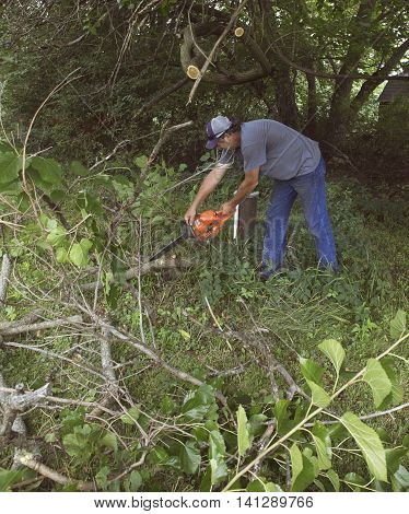 Man sawing tree branches in a yard