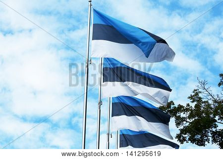 Estonia Flags. Tallinn, Estonia. Estonians consider themselves a Nordic nation rather than Baltic,based on their cultural and historical ties with Sweden, Denmark and particularly Finland.