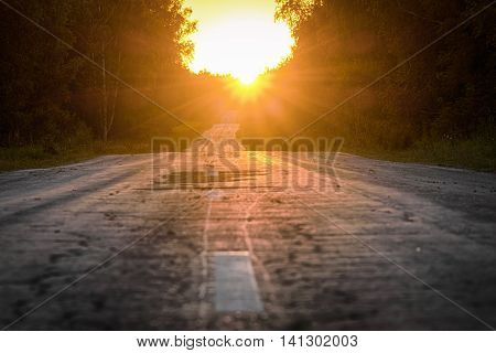 The road through the woods disappearing into the distance on the background of sunset