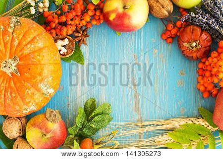 Rich fall harvest frame - nuts, flowers, berries and apples. Space for text
