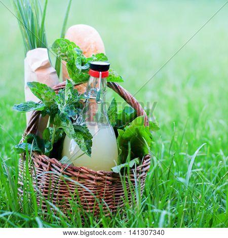 Picnic Basket Mint Drink Fresh Bread Green Outdoor