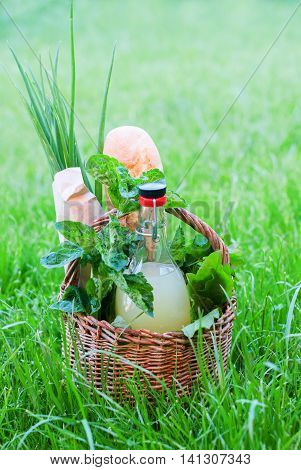 Picnic Basket Mint Drink Bread Leaves Baguette