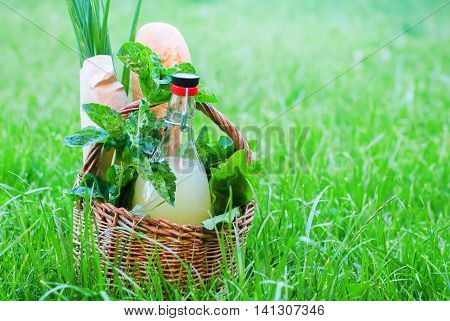Basket Mint Drink Fresh Bread Leaves Greens Summer