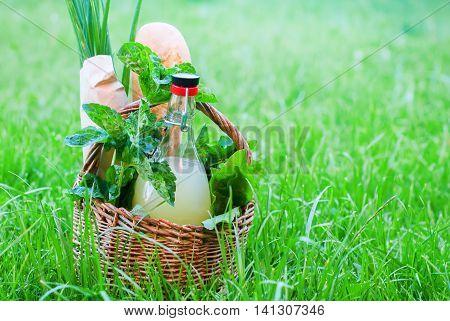 Basket Mint Drink Fresh Bread Leaves Greens Summer