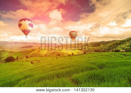 Balloon flying on rice field, Rice field in mountain or rice terrace in the nature, Relax day in beautiful location, rice field in the mountain and travel place for relax and feeling nice