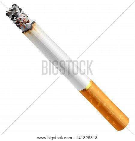 No smoking Tobacco Crop Smoke Physical Structure Smoking Issues