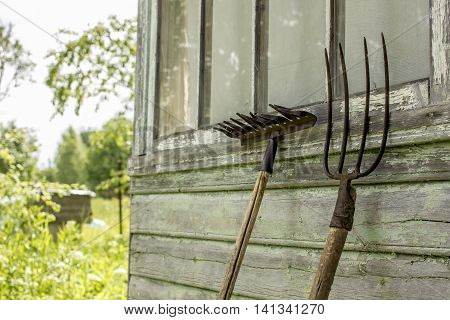 forks and rakes are leaning on the house on a background of trees and foliage