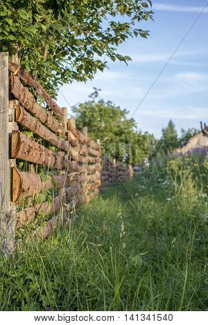 overgrown with high grass path goes along a wooden fence to the old house in the village at sundown